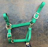 Fabtron Adjustable Nylon Horse Halter Green