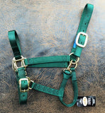 Fabtron Adjustable Nylon Horse Halter Hunter Green