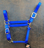 Fabtron Adjustable Nylon Horse Halter Royal blue