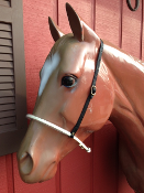 Covered Rope Noseband Tiedown