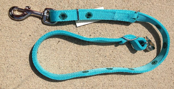 Nylon Quick Change Tie Down Strap Parkers Turquoise
