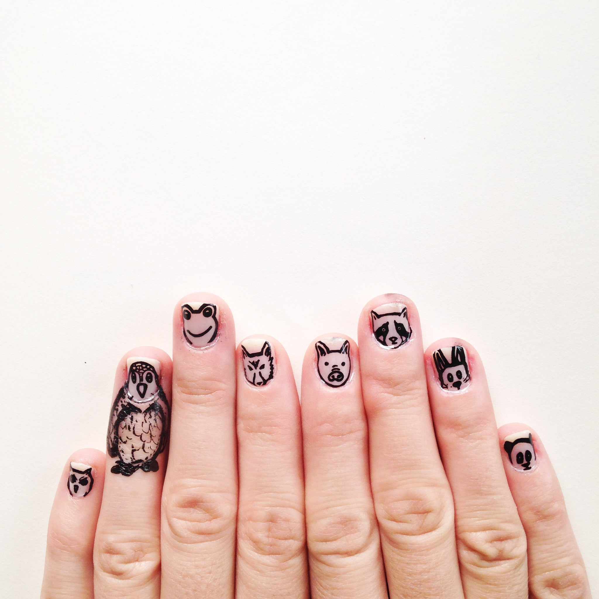 Animal Party - Nail Wrap - Scratch - 4