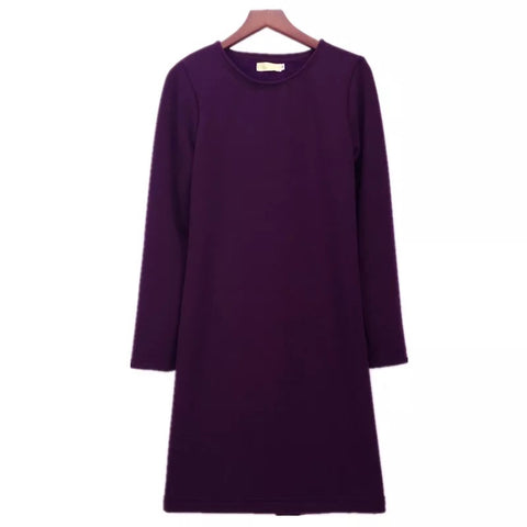 Basic Warm Long Sleeve Sweat Dress