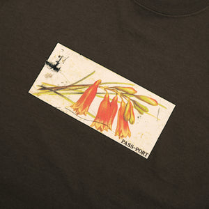 "PASS~PORT ""TIN FLORAL"" TEE CHOCOLATE"