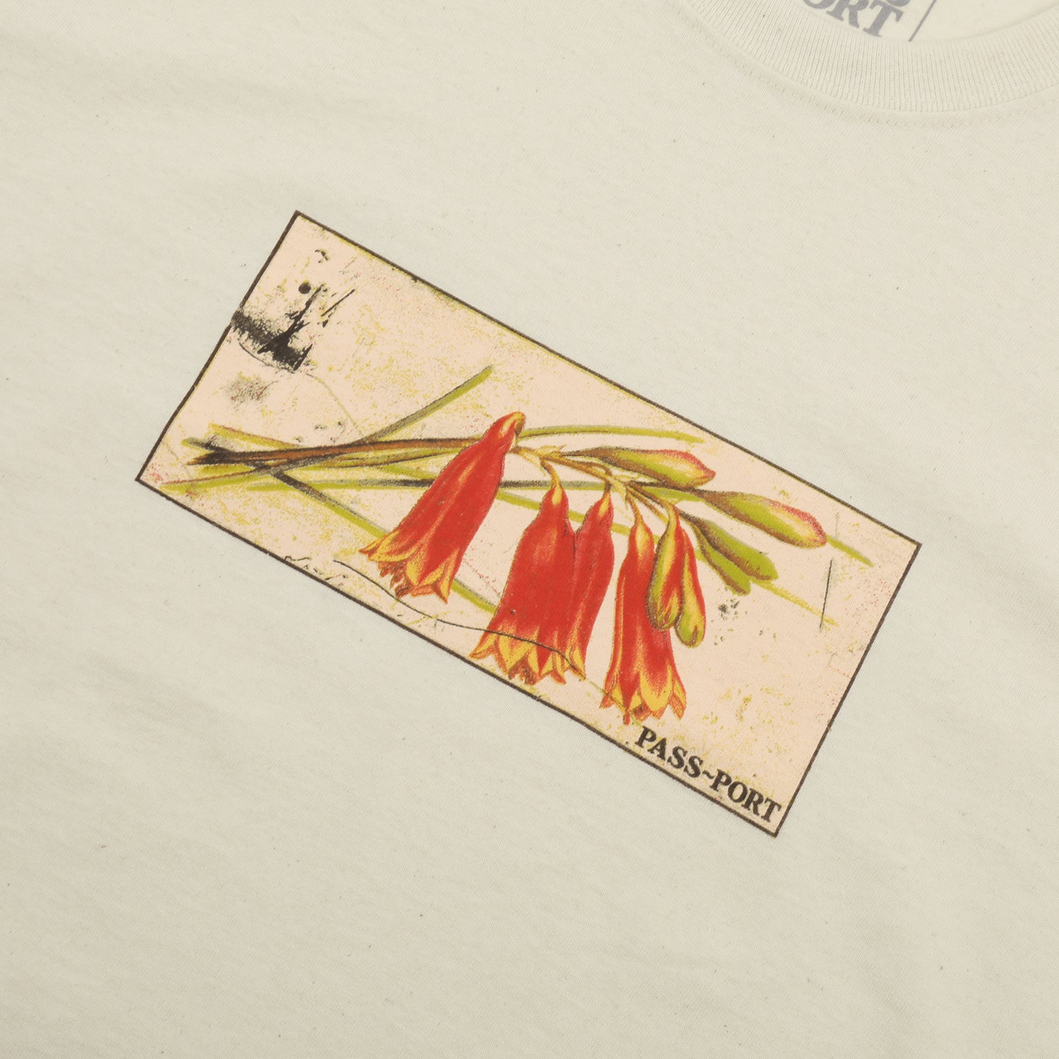 "PASS~PORT ""TIN FLORAL"" TEE NATURAL"