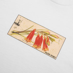 "PASS~PORT ""TIN FLORAL"" TEE WHITE"