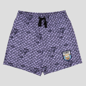 PASS~PORT & CAMP COVE SWIM BOARDIE LAVENDER