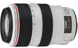Canon EF 70-300mm f/4-5.6L IS USM EF Mount Lens
