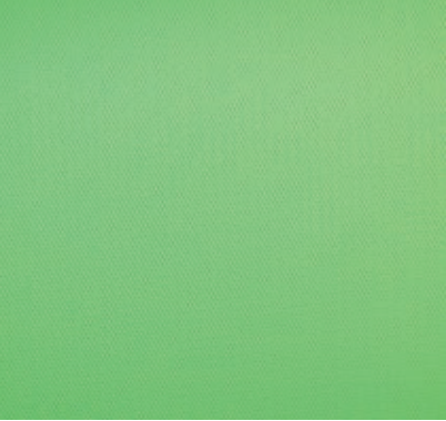 Savage Vinyl Chroma Green 2.75M X 3.04M