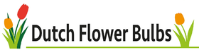 dutchflowerbulbs.com