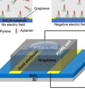 Graphenea GFET-S20 used for biosensing