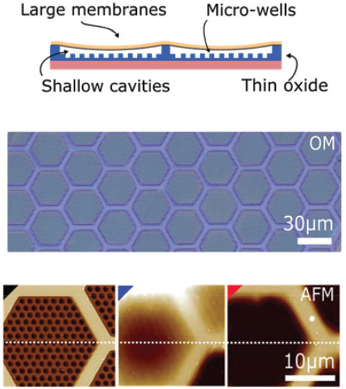 Graphene/polymer pressure sensors compete with existing technology