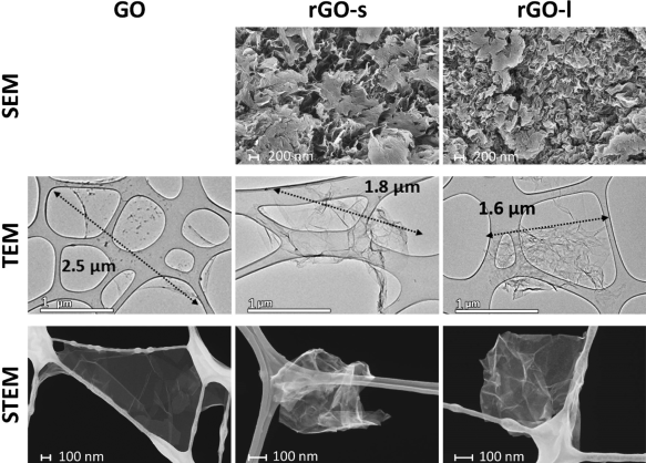 Graphene oxide and rGO microparticles not toxic to mouse lung cells