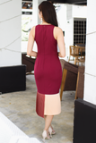 Novita Pleat Fitted Dress (Autumn)