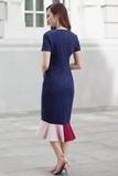Seraina Colourblock Dress (Navy)