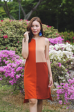 Shera Colorblock Dress (Warm)