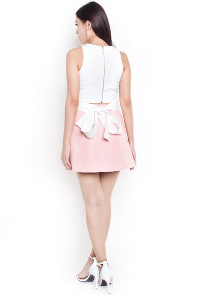 Brendise Leather A-Line Skirt (Pink)
