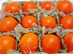 Navel Orange Box