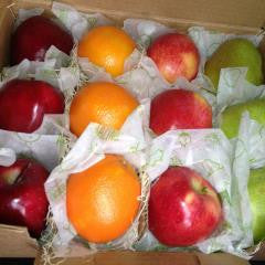 Sampler Fruit Box
