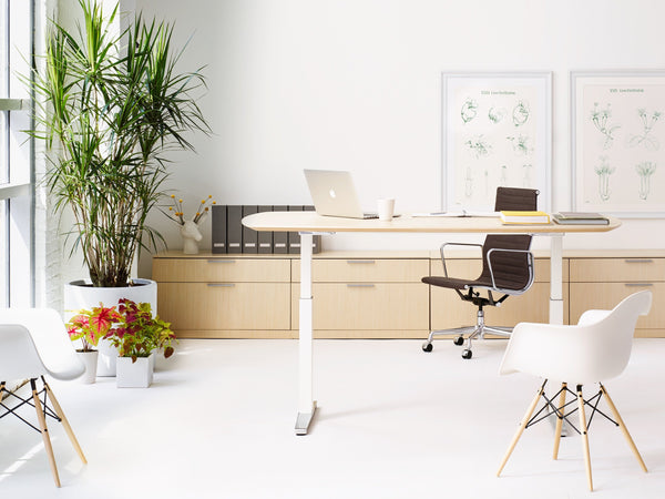Renew™ Sit-to-Stand Desk - Oval