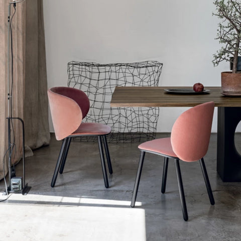Dua Dining Chair