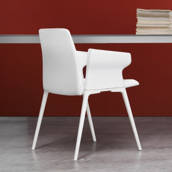 Plate Dining Chair