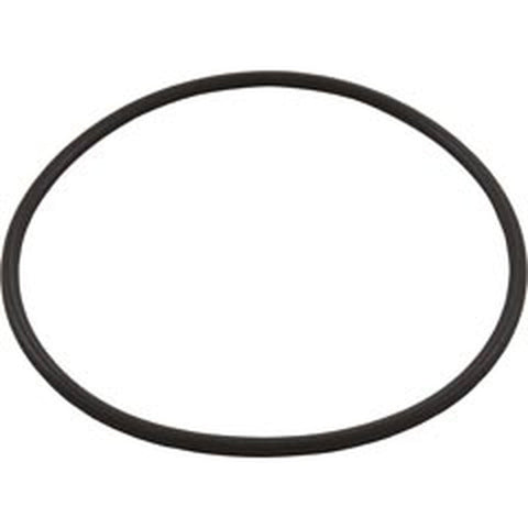 Hayward Leaf Canister O-Ring - Part # AXW542