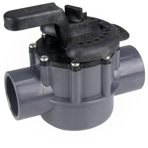 Pentair 2 Way Valve - 50mm