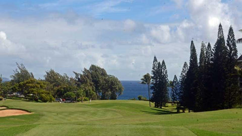 Hawaii Tee Times  Kapalua Bay Golf Course 3rd hole