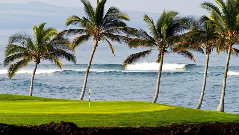 Waikoloa Beach and beautiful palms at the ocean