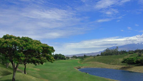 Big Island Country Club 12 hole par 5