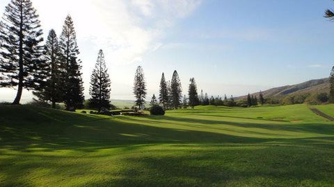 King Kamehameha Golf Course with views of ocean