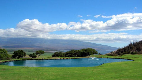 Kahili Golf Course beautiful par 3 8th hole