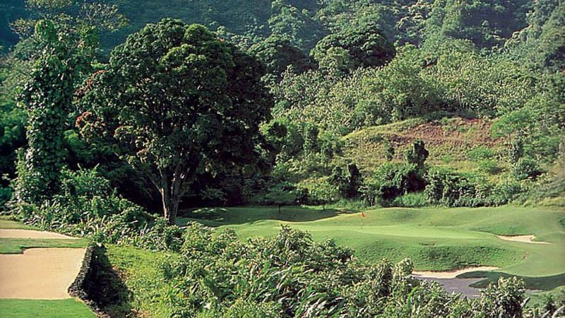 Ko'olau Golf Club Jungle