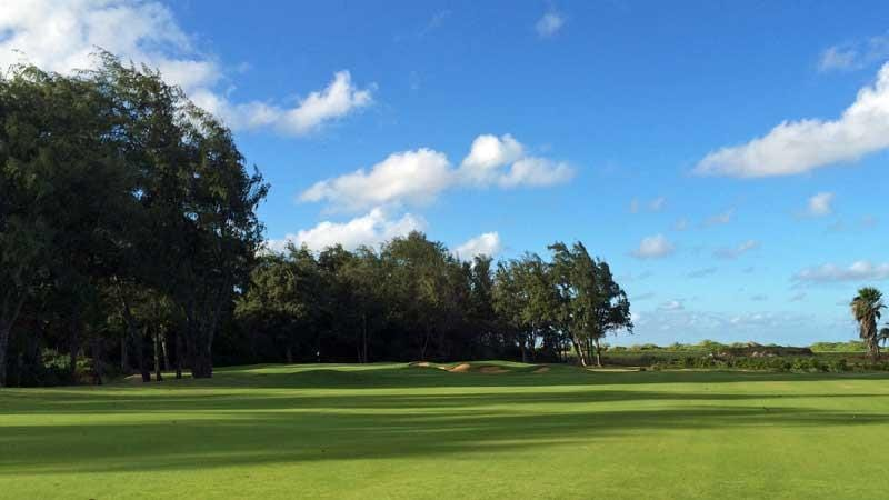 14th green Turtle Bay Palmer