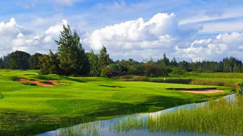 Turtle Bay Palmer 8th hole Hawaii TeeTimes