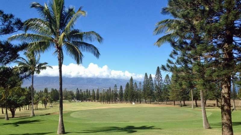 Pukalani Golf Course view from behind green