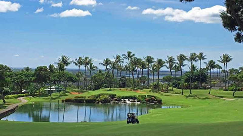 Waikele Country Club Signature 4th hole
