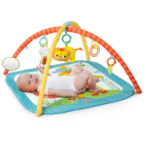 Bright Starts Little Lions & Birds and Blooms Activity Gym Assortment $79.90 BS10260