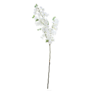 AB-29635-WHITE CHERRY BLOSSOM STEM