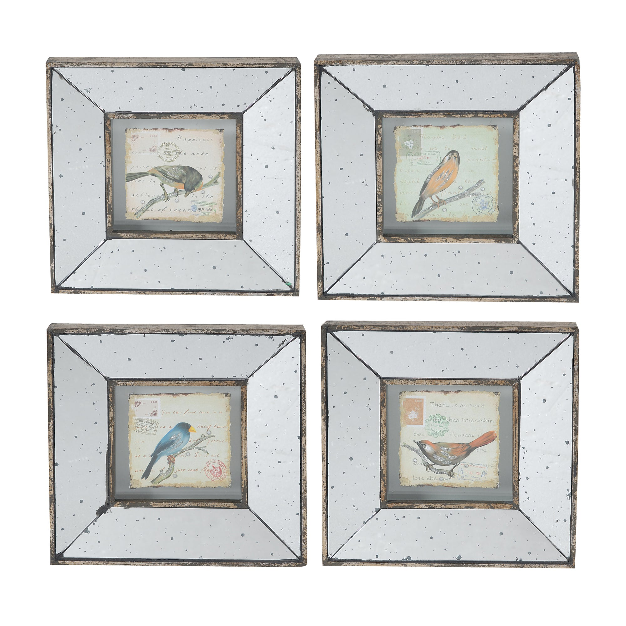 "AB-32838 S/4 12x1.38x12"" Simeon Square Framed Bird Prints, Medium - Picket&Rail"