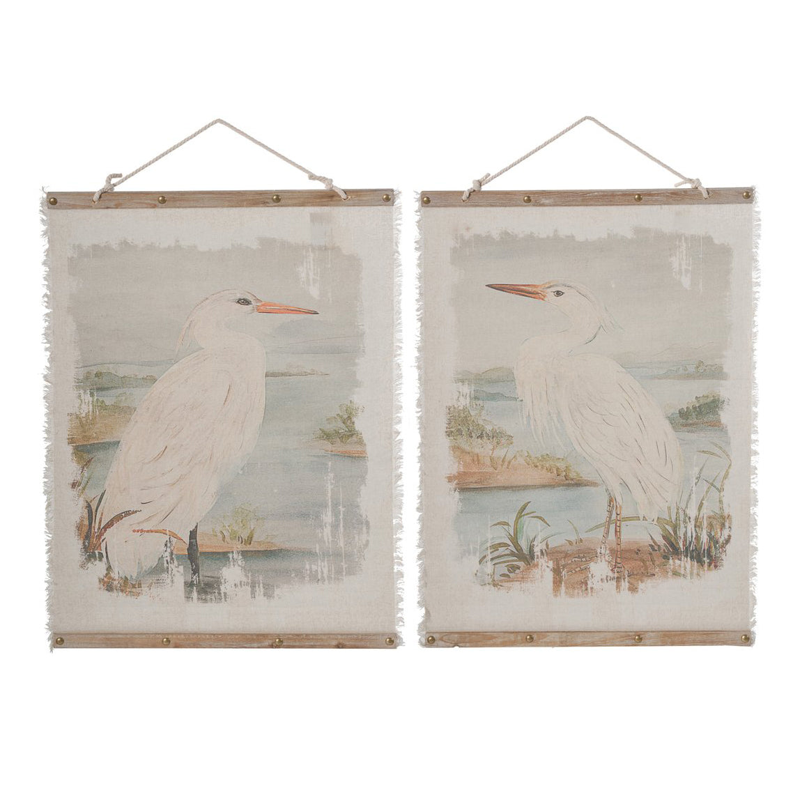 AB-34929 Cape Pelican Hanging Prints - Picket&Rail
