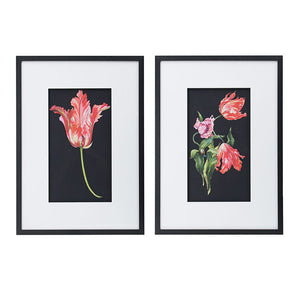 Wall Decoratives - Wall Art Set Of 2 (AB-AV48394)
