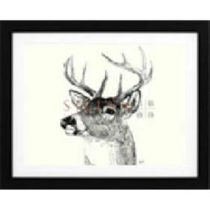 Animals Wall Art by Amelia (BQPT1030)