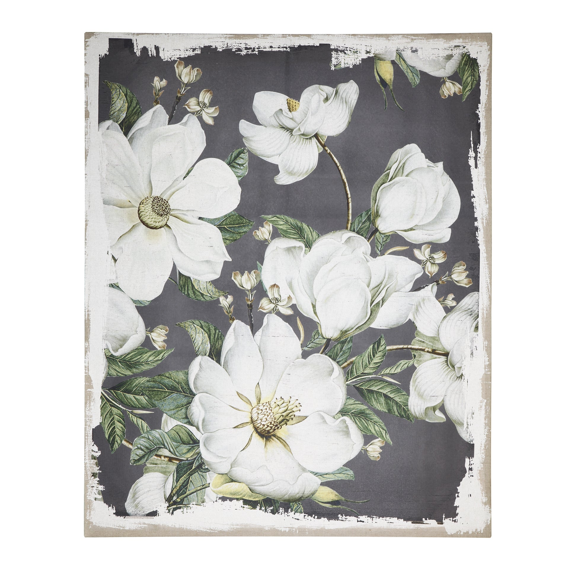 AB-JC38648 Magnoia Blooms Canvas Print - Picket&Rail