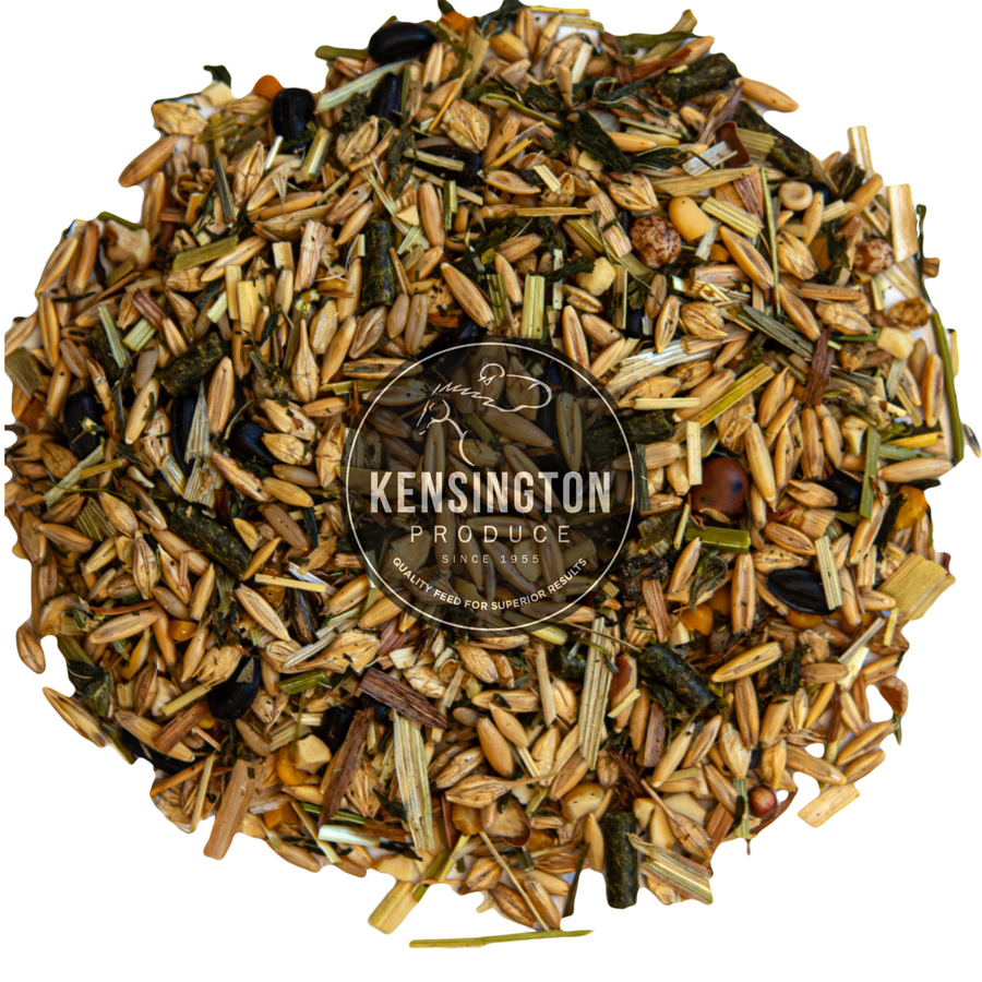 Kensington Pre-Training Mix