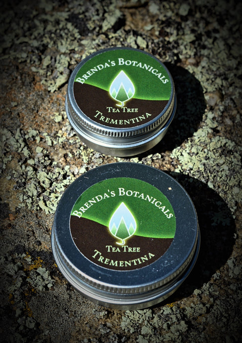 Brenda's Botanicals Piñon (Trementina) Salve - Tea Tree