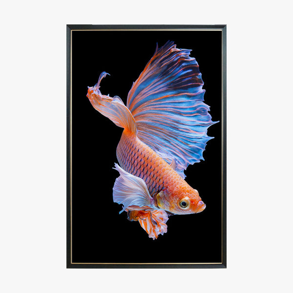 Crystal Painting - Red Goldfish