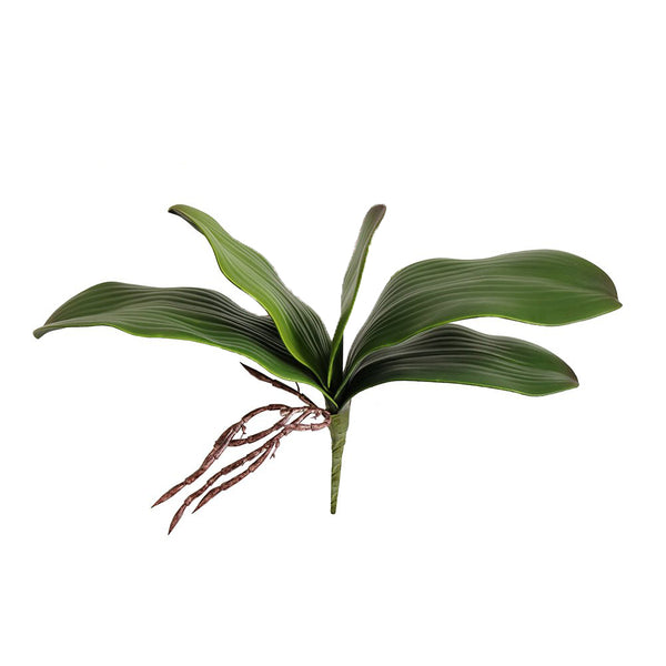 Artificial Green Phalaenopsis Orchid Leaves