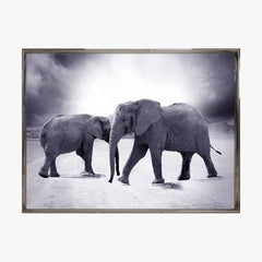 Crystal Painting - Elephant - Black & White